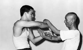 ip man bruce lee